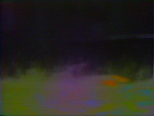 JVC-3300AU_grass
