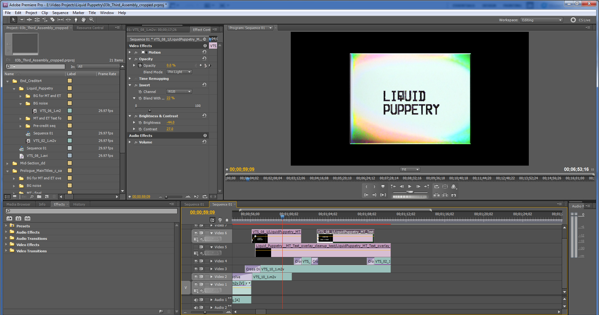 LiquidPuppetry_MT_CS5_snapshot_b